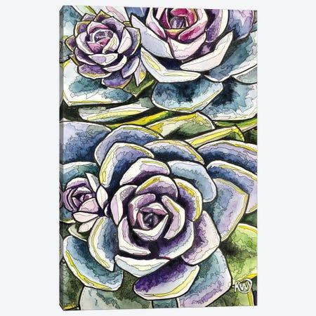 Succulents Canvas Print #KMW82} by Kim Winberry Canvas Artwork