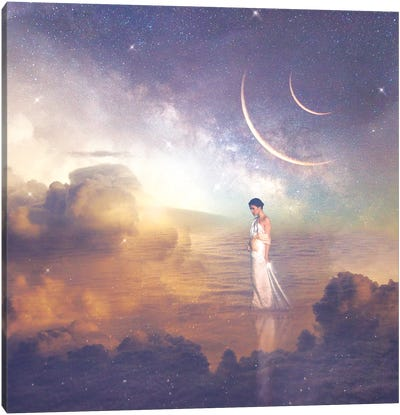 Inner Journey Canvas Art Print