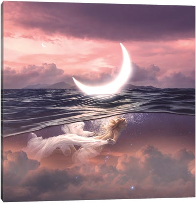 New Moon In Cancer Canvas Art Print
