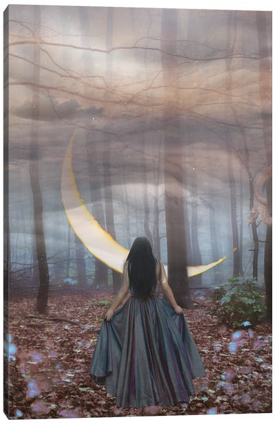 New Moon in Scorpio Canvas Art Print