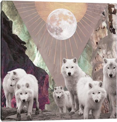She Runs With The Wolves Canvas Art Print