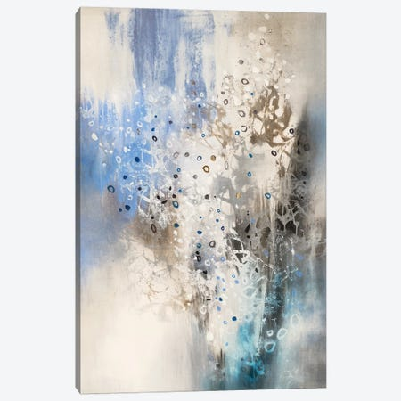 Glacier Stones Canvas Print #KNA6} by K. Nari Canvas Art