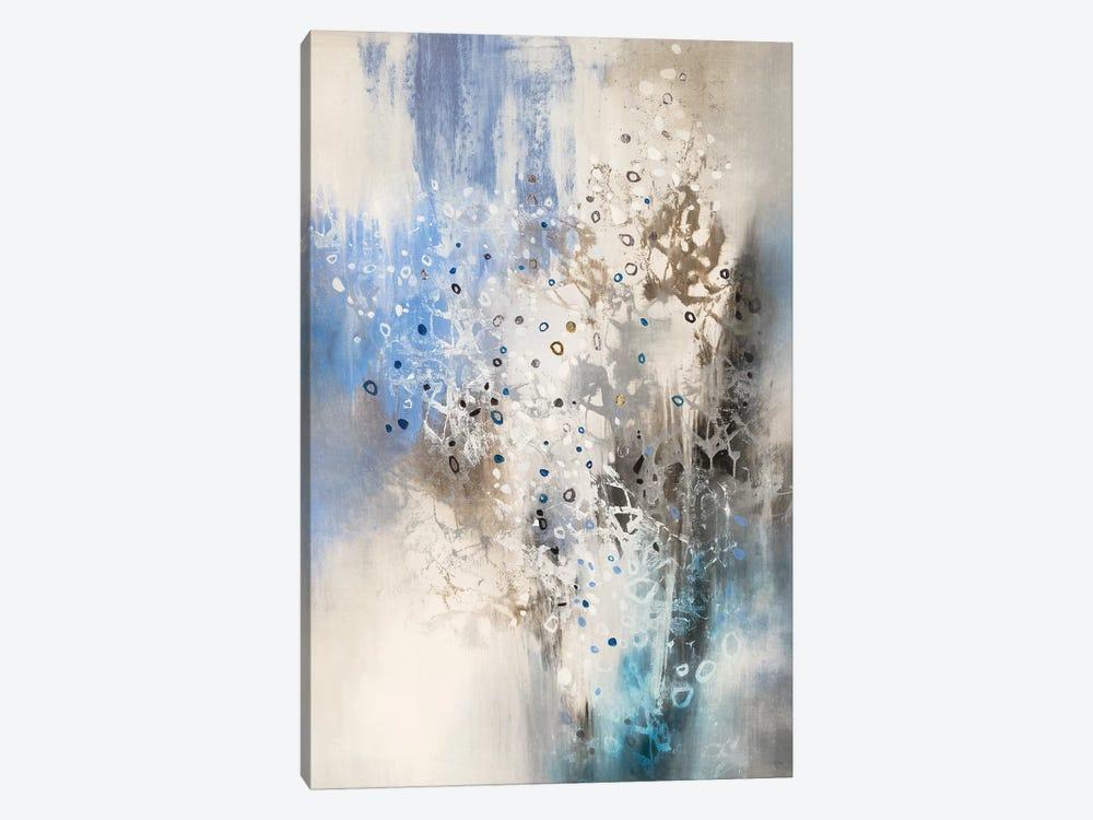 Glacier Stones by K. Nari 1-piece Canvas Art
