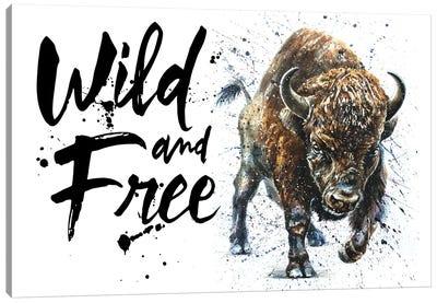 Buffalo Wild & Free II Canvas Art Print