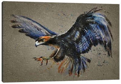Eagle Bg Canvas Art Print
