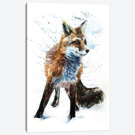 Fox IV Canvas Print #KNK23} by Konstantin Kalinin Canvas Art