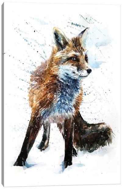 Fox IV Canvas Art Print