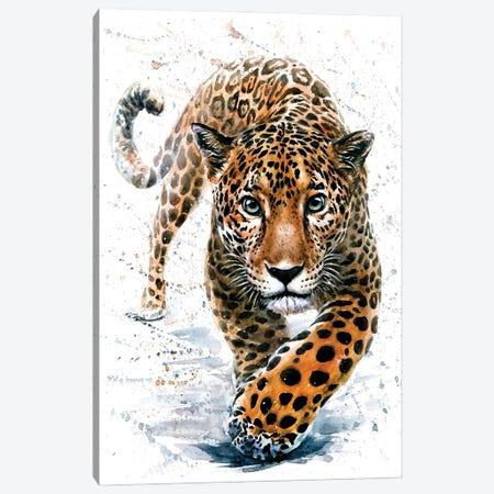 Jaguar Canvas Print #KNK26} by Konstantin Kalinin Art Print