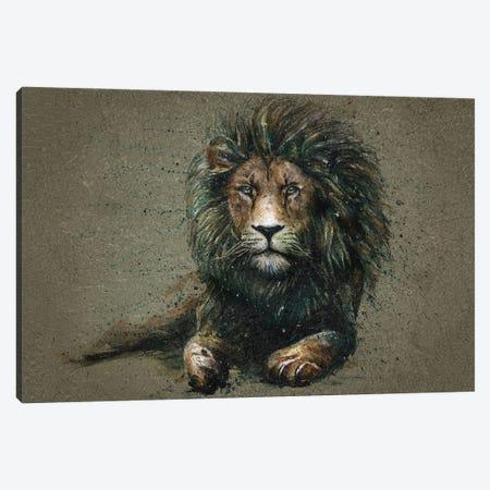 Lion II Canvas Print #KNK29} by Konstantin Kalinin Canvas Artwork