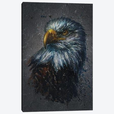American Eagle Bg Canvas Print #KNK2} by Konstantin Kalinin Canvas Print