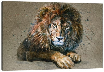 Lion III Canvas Art Print