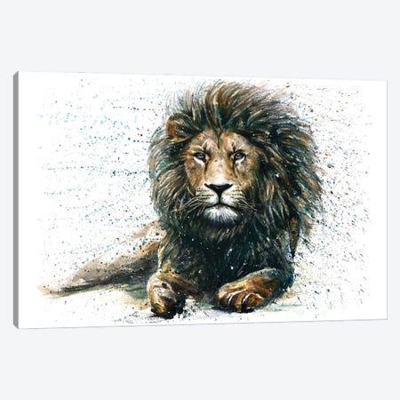 Lion IV Canvas Print #KNK31} by Konstantin Kalinin Art Print