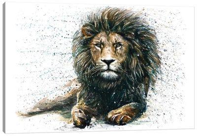 Lion IV Canvas Art Print