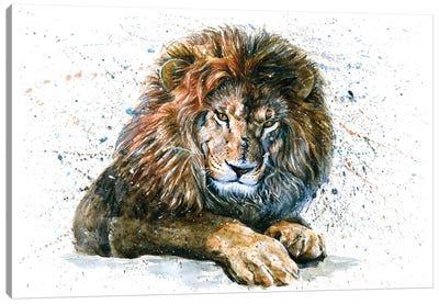 Lion V Canvas Art Print
