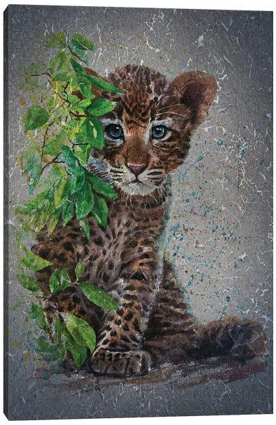 Little Leopard II Canvas Art Print