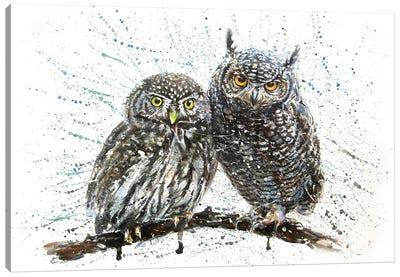Little Owl Canvas Art Print