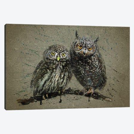 Little Owls Canvas Print #KNK40} by Konstantin Kalinin Canvas Wall Art