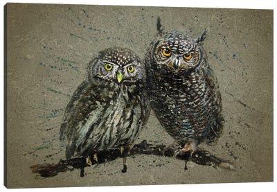 Little Owls Canvas Art Print