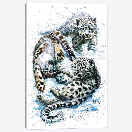 Little Snow Leopards Canvas Print #KNK41} by Konstantin Kalinin Canvas Wall Art
