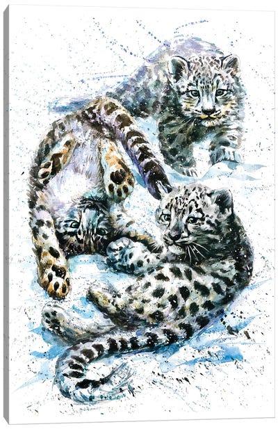 Little Snow Leopards Canvas Art Print