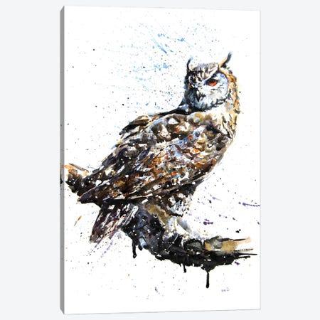 Owl II Canvas Print #KNK45} by Konstantin Kalinin Art Print