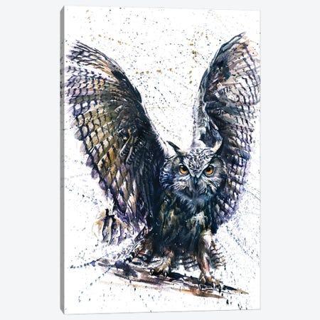 Owl III Canvas Print #KNK46} by Konstantin Kalinin Canvas Art Print