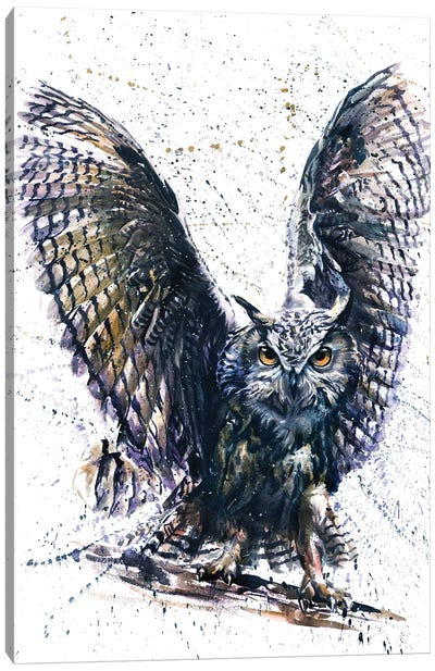 Owl III Canvas Art Print