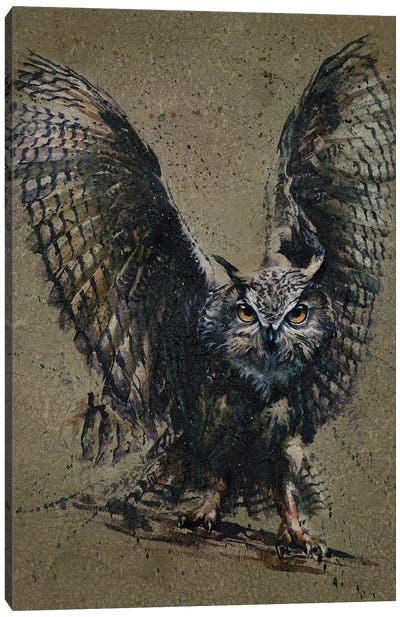 Owl Background Canvas Art Print