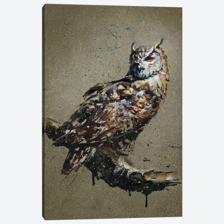 Owl Canvas Print #KNK48} by Konstantin Kalinin Canvas Artwork
