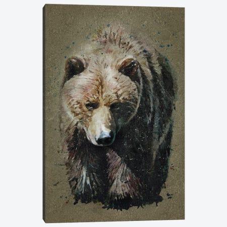 Bear Bg Canvas Print #KNK4} by Konstantin Kalinin Canvas Artwork