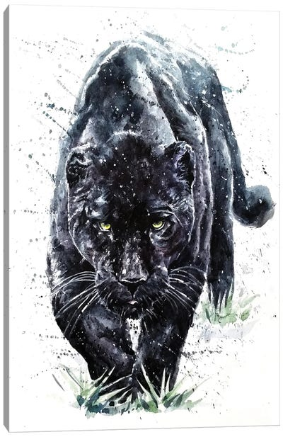 Panther II Canvas Art Print