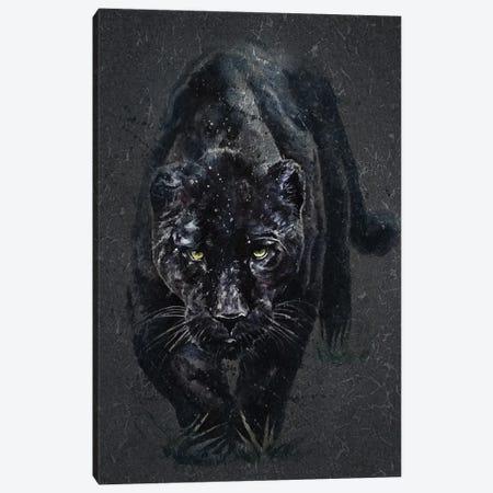 Panther Canvas Print #KNK51} by Konstantin Kalinin Canvas Print