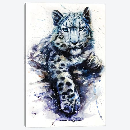 Snow Leopard II Canvas Print #KNK58} by Konstantin Kalinin Canvas Art Print