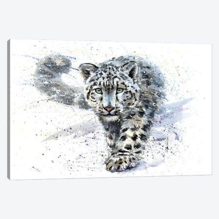 Snow Leopard III Canvas Print #KNK59} by Konstantin Kalinin Art Print