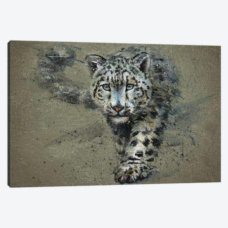 Snow Leopard Canvas Print #KNK60} by Konstantin Kalinin Canvas Artwork