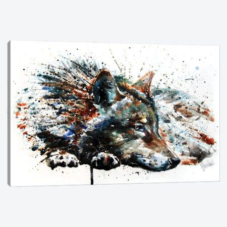 Wolf III Canvas Print #KNK68} by Konstantin Kalinin Canvas Art