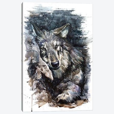 Wolf Life Canvas Print #KNK76} by Konstantin Kalinin Canvas Artwork