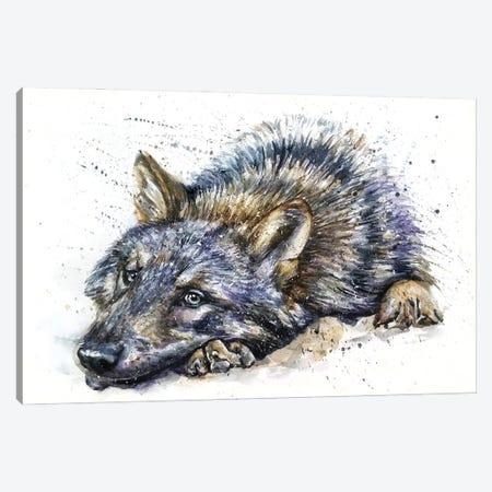 Wolf Watercolor Canvas Print #KNK77} by Konstantin Kalinin Canvas Wall Art