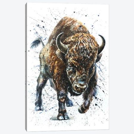 Buffalo II Canvas Print #KNK7} by Konstantin Kalinin Canvas Art