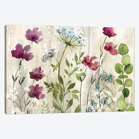 Meadow Flowers I Canvas Print #KNU113} by Conrad Knutsen Canvas Wall Art