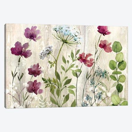 Meadow Flowers I Canvas Print #KNU113} by Conrad Knutsen Canvas Wall Art