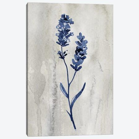 Indigo Botanical II Canvas Print #KNU126} by Conrad Knutsen Canvas Art