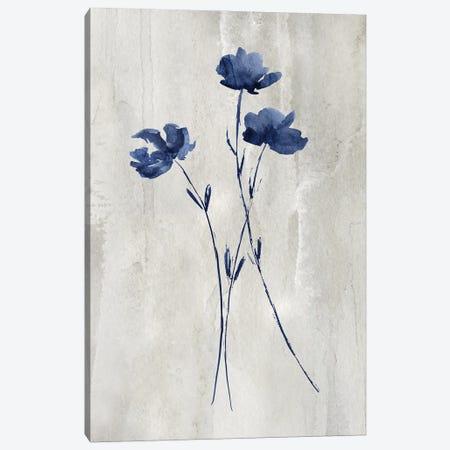 Indigo Botanical III Canvas Print #KNU127} by Conrad Knutsen Canvas Art