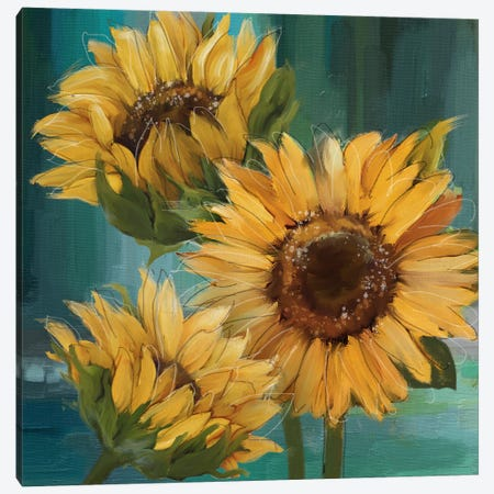 Sunflower I 3-Piece Canvas #KNU132} by Conrad Knutsen Canvas Wall Art