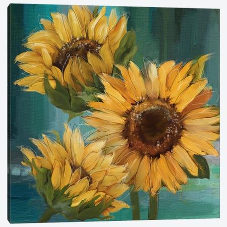Sunflower I Canvas Print #KNU132} by Conrad Knutsen Canvas Wall Art