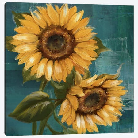 Sunflower II Canvas Print #KNU133} by Conrad Knutsen Canvas Wall Art