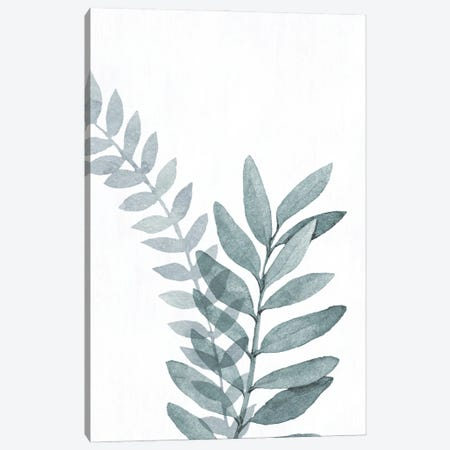 Blue Botanical Wash II Canvas Print #KNU137} by Conrad Knutsen Canvas Print