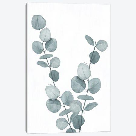 Blue Botanical Wash III Canvas Print #KNU138} by Conrad Knutsen Canvas Artwork