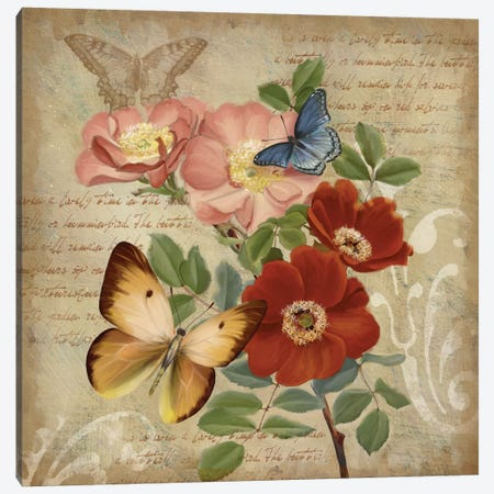 Butterfly Botanical I Canvas Print #KNU16} by Conrad Knutsen Canvas Wall Art