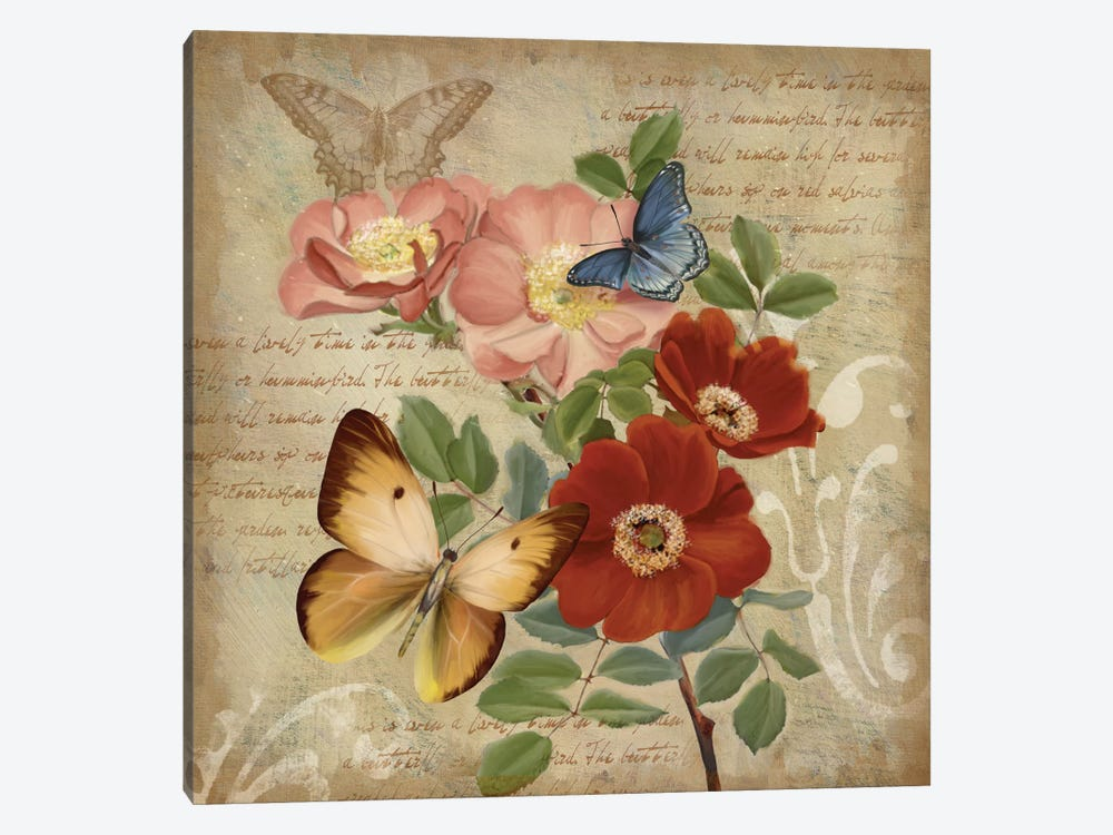 Butterfly Botanical I by Conrad Knutsen 1-piece Canvas Art Print